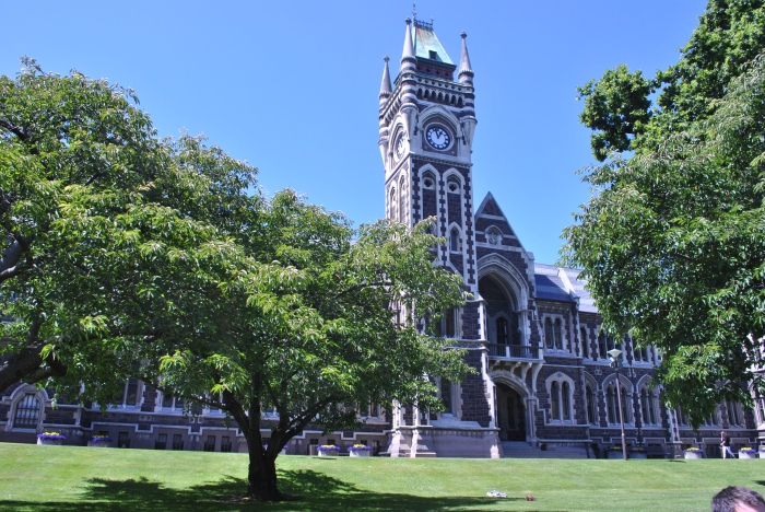 Slightly less gory than the previous picture, this is the Clocktower building at University of Otago, Dunedin. An example of how nice a city it is. Photo by the author.