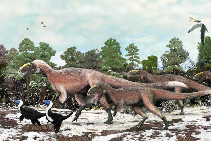 Even large theropods such as this Yutyrannus huali have been found with some sort of fuzzy covering. Artwork by Brian Choo.